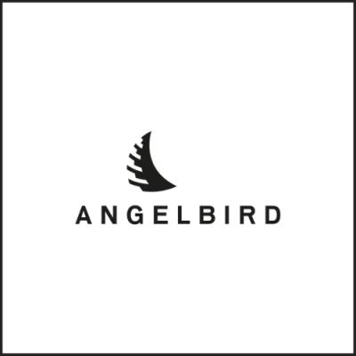 ANGELBIRD 記憶卡